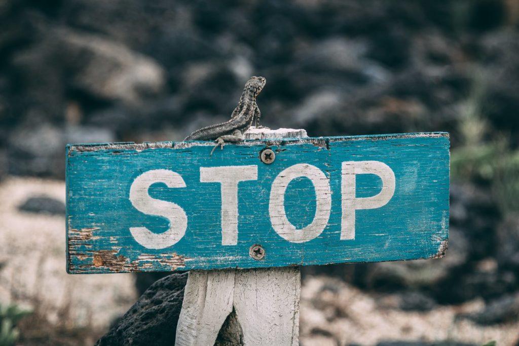 stop vive